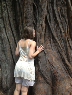 Redwood love